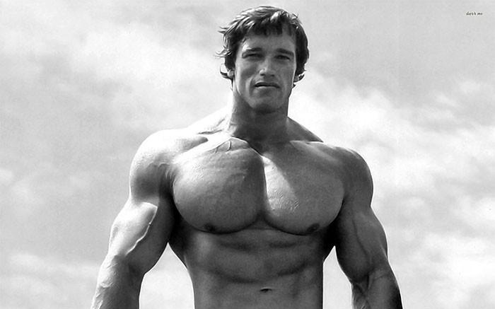 Arnold Schwarzenegger Bodybuilder
